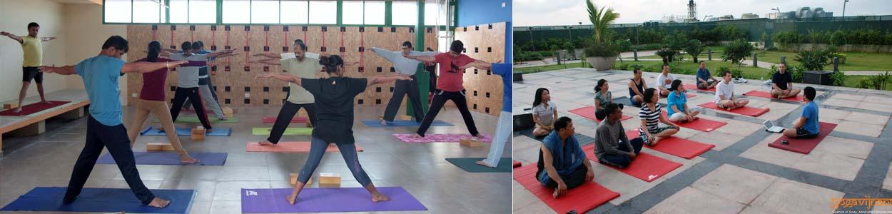 Yoga Classes in Bangalore by Vinay Siddaiah